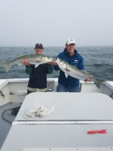 charter fishing cape cod