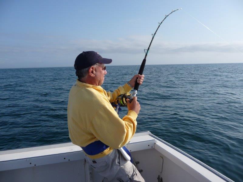 big catch cape cod fishing charters